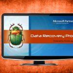 Data Recovery Pro bellek kopyası