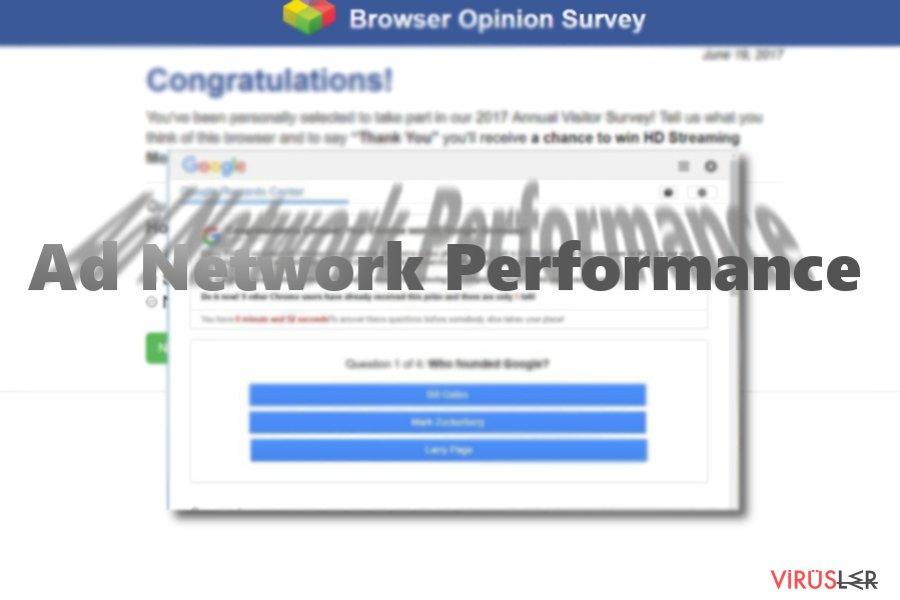 Adnetworkperformance.com bellek kopyası