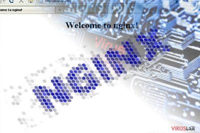 Nginx Virus