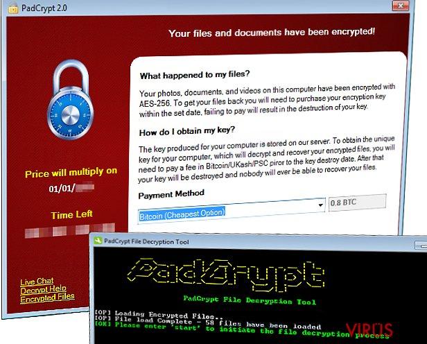 PadCrypt fidye yazılımı