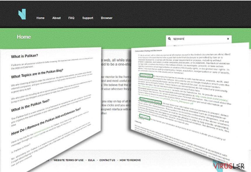Palikan.com Yönlendirmesi bellek kopyası