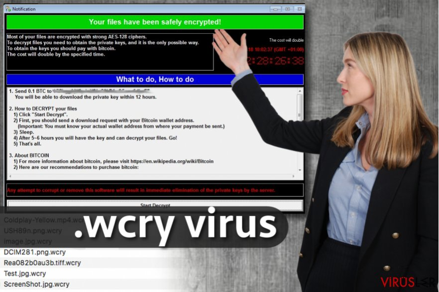 .wcry dosya uzantısı virüsü