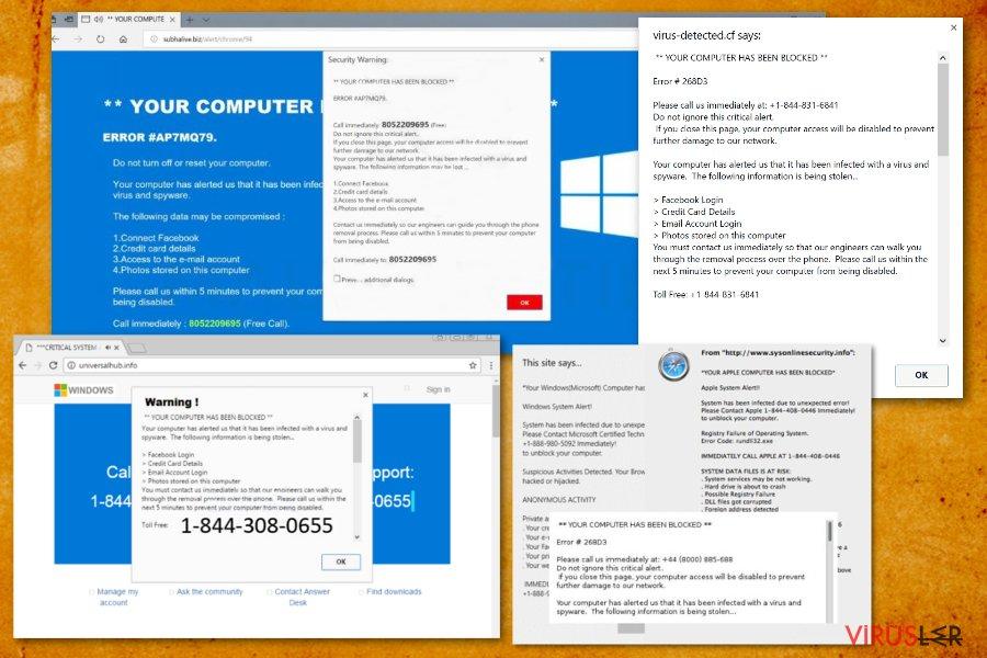 """""""Bilgisayarınız bloke oldu"""" virüsü bellek kopyası"""